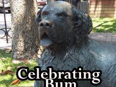 History Talks! Celebrating Bum